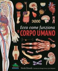 Ecco come funziona il corpo umano