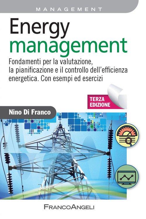 Energy management. Fondamenti per la valutazione, la pianificazione e il controllo dell'efficienza energetica. Con esempi ed esercizi