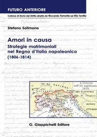 Amori in causa. Strategie matrimoniali nel Regno d'Italia napoleonico (1806-1814)