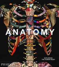 Anatomy. Exploring the human body